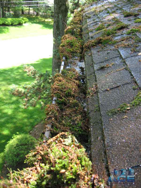 Clogged Gutters requiring Gutter Cleaning in Paramus, NJ