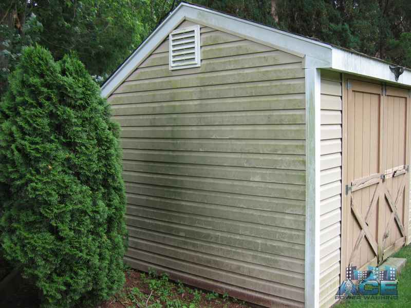 Mold on vinyl siding shed in Fair Lawn, NJ