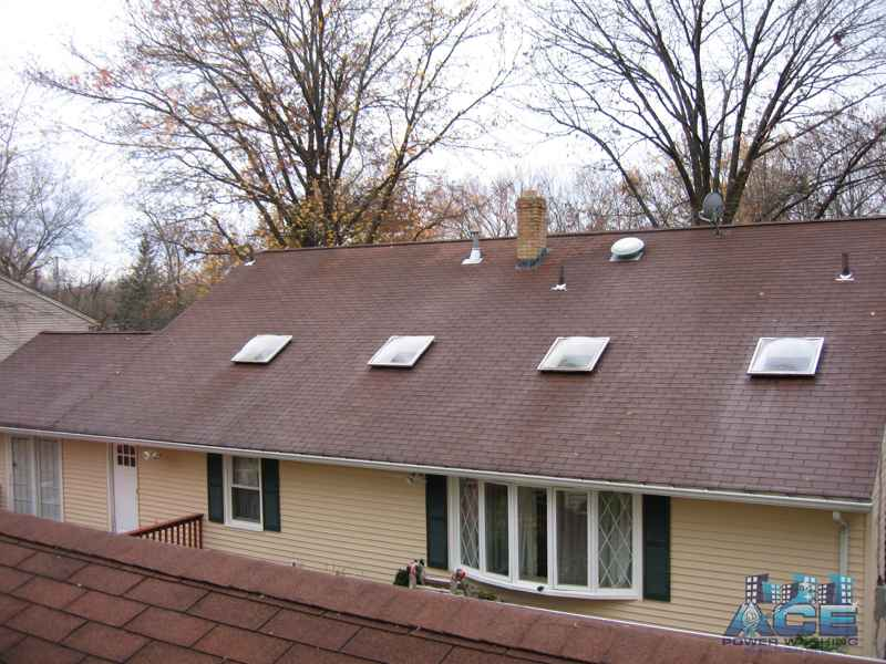 Roof Cleaning in Cresskill, NJ